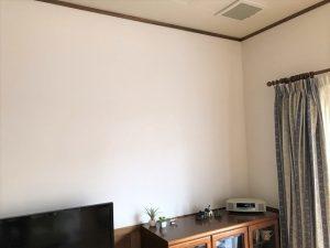 お気に入りのホタテ塗り壁